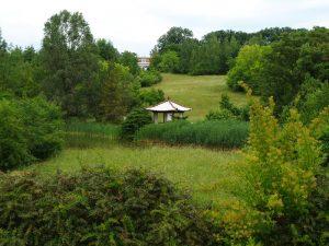 Arborétum Mlyňany